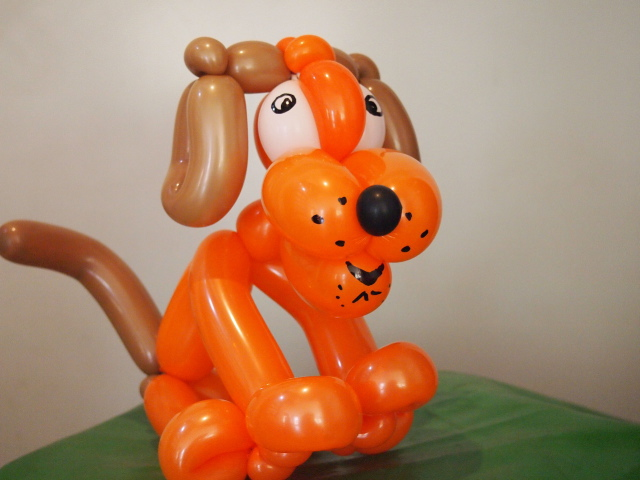 Luftballonkünstler Warburg Hund sitzent